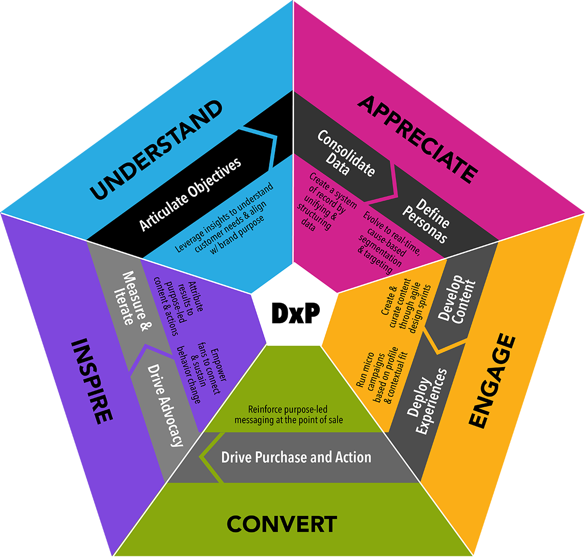 This is about the Dxp Framework, an end-to-end roadmap to create brand purpose and social impact