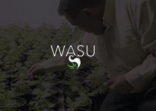 Wasu Project